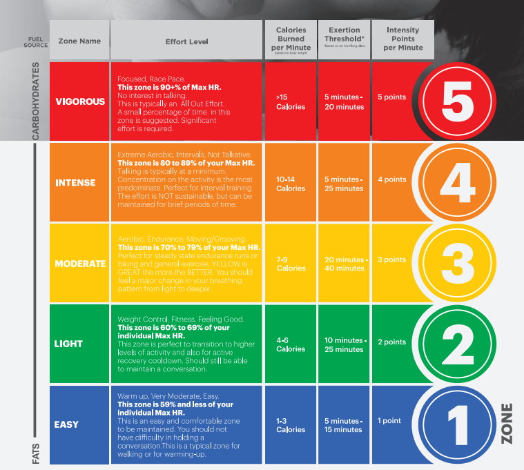 HRM ZONES for fitness